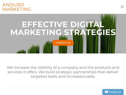 Anduro- Internet Marketing & Search Engine Optimization Firm