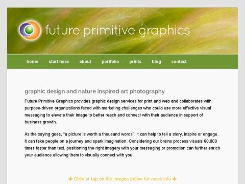 Future Primitive Graphics